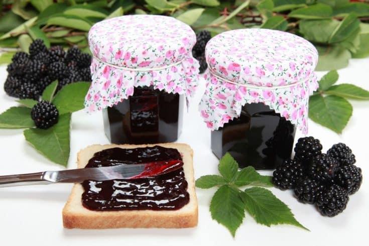 homemade sugar free blackberry jam