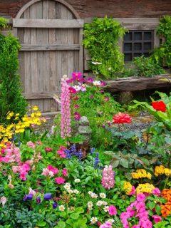 colorful front yard cottage landscape