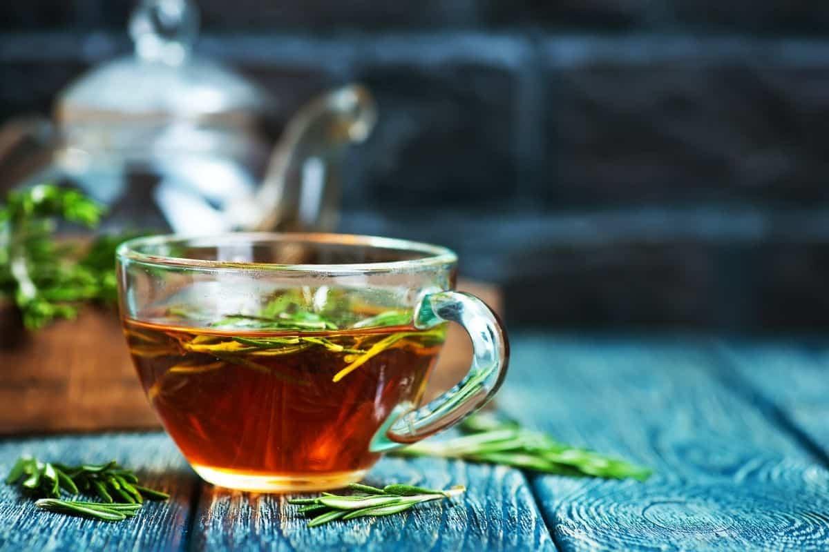 rosmeary tea