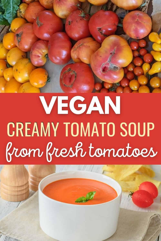 Vegan creamy tomato soup from fresh tomatoes