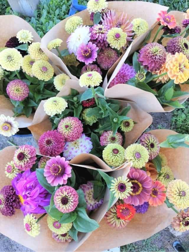 flower bouquets, ready to be delivered to area florists