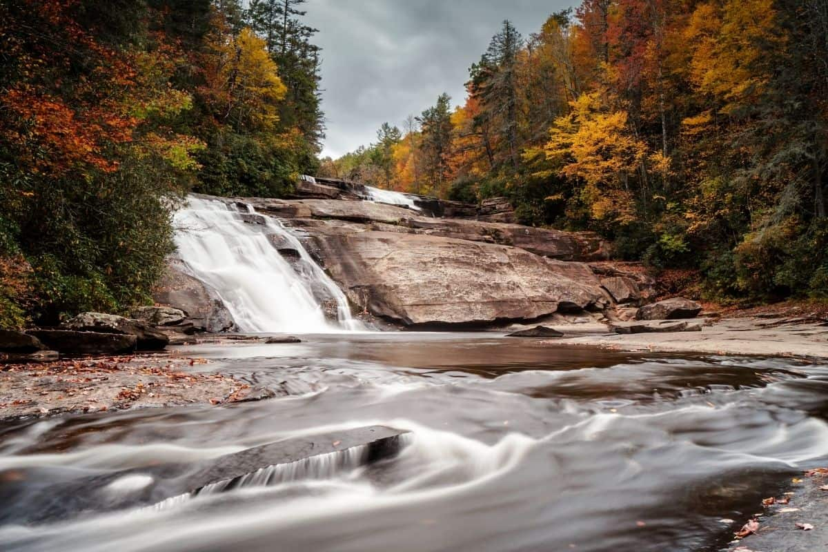 Dupont State Forest in the fall