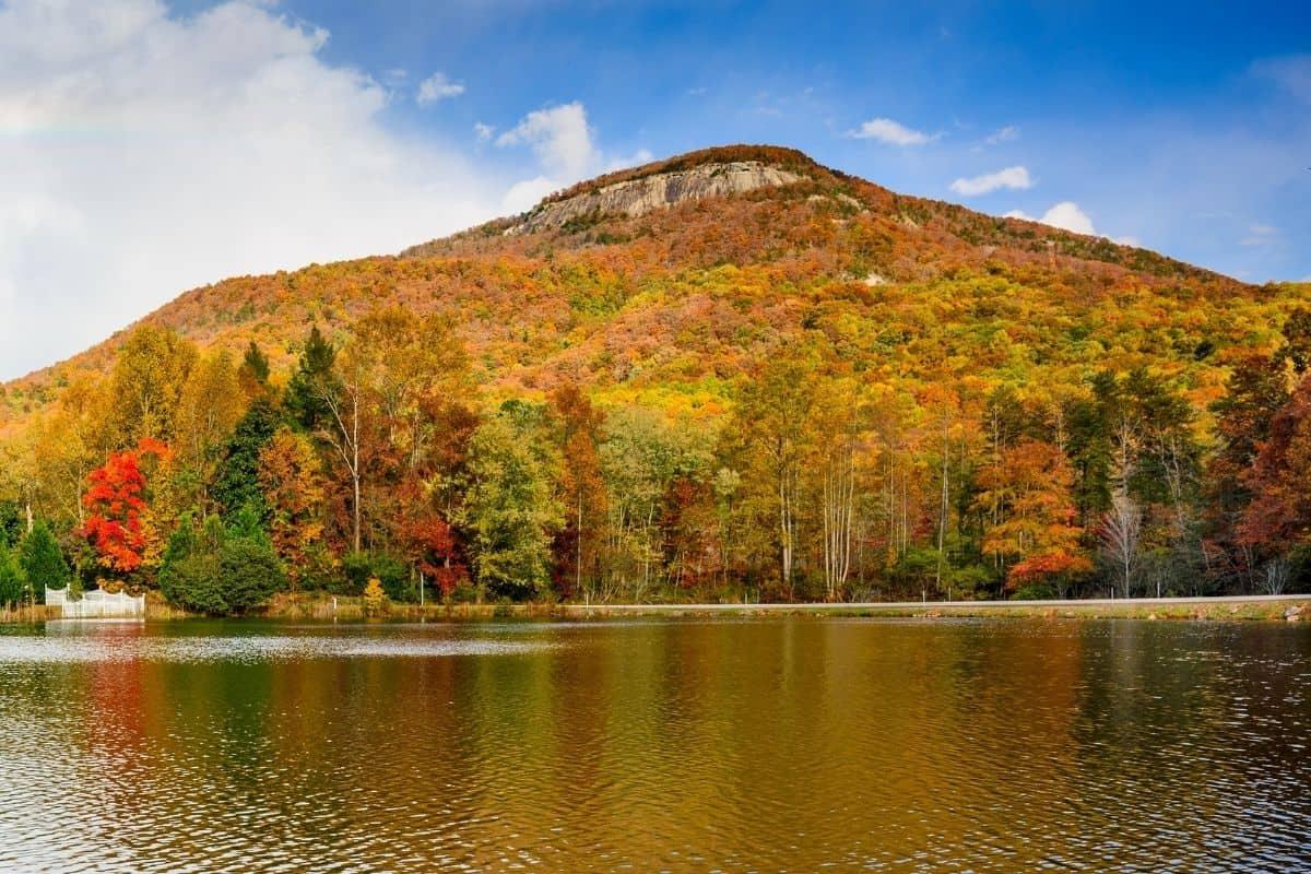 fall colors at Yonah Mountain