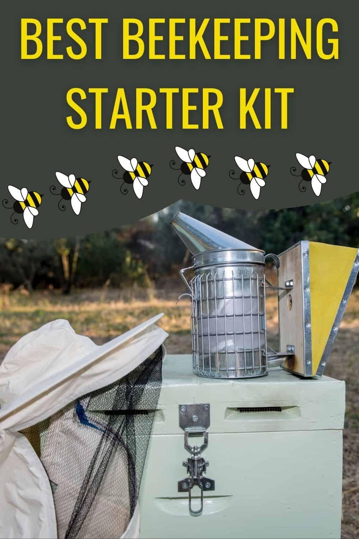 Best beekeeping starter kit