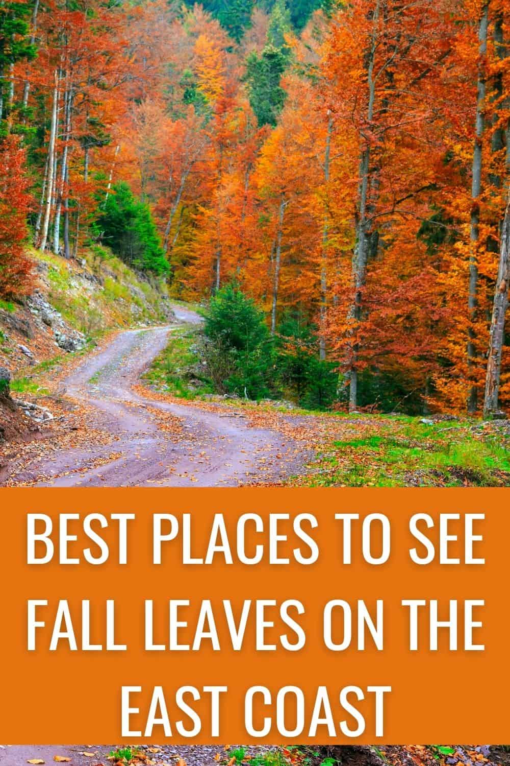 Best places to see fall leaves on the East Coast